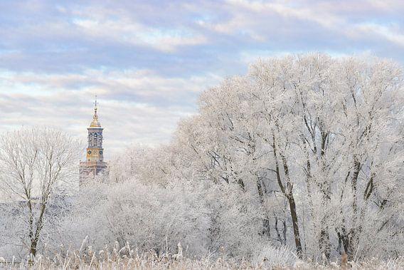Berijpte bomen in de uiterwaarden van de IJssel bij Kampen met de Nieuwe Toren in de achtergrond van Sjoerd van der Wal