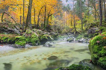Herfst in Oostenrijk von Johan Kalthof