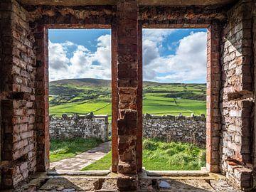 Irische Landschaft von Chris van Es