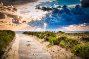 strandopgang richting de Noordzee van eric van der eijk