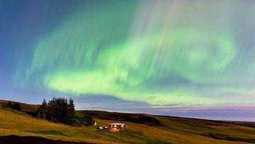 Island, aurora borealis, polarlicht von Jeannette Kliebisch