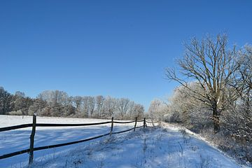 Winterlandschap van Peter Schmidt