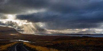 Álftafjörður von Dominiek Cottem