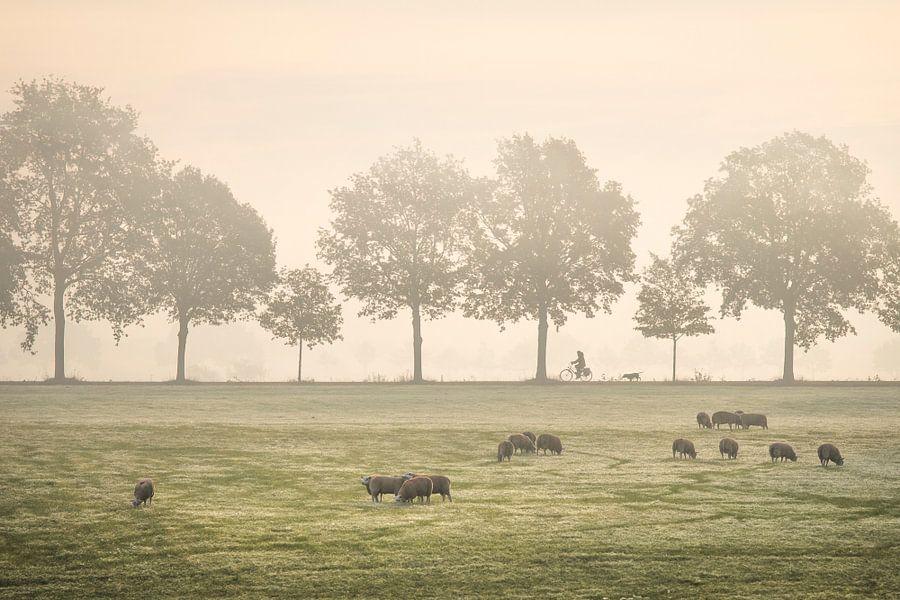 Fietser in de mist van Teuni's Dreams of Reality