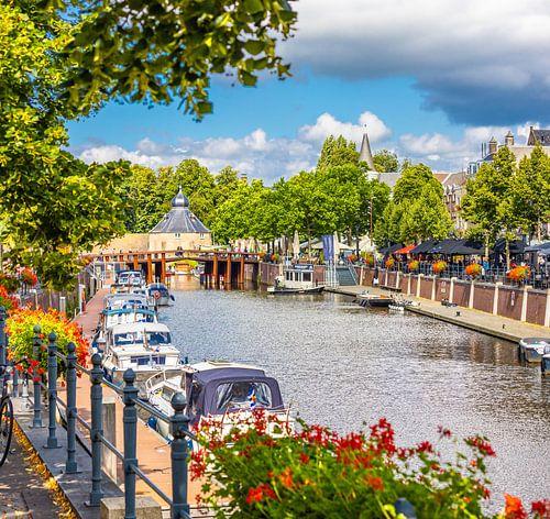 Breda, Haven Spanjaardsgat in de zomer