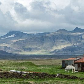 Iceland farm sur jowan iven