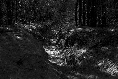 Chemin latéral