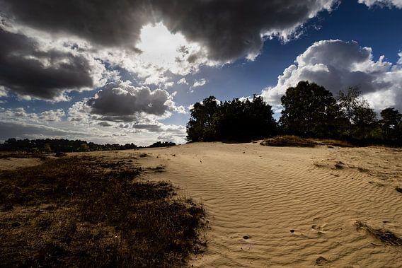 Zandverstuiving Kootwijkerzand