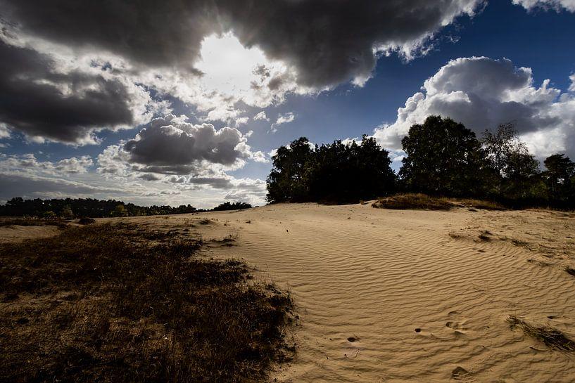 Zandverstuiving Kootwijkerzand van Bart van Dam