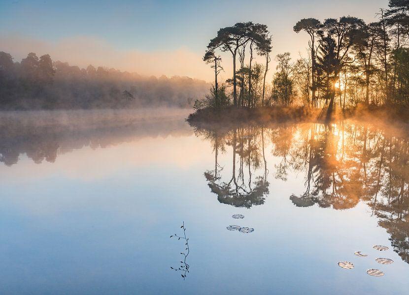 sprookjes landschap  van Nancy Carels