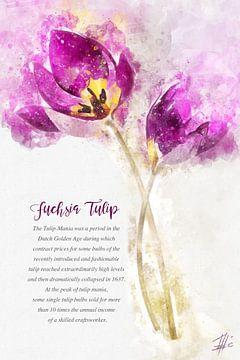 Tulp van Theodor Decker