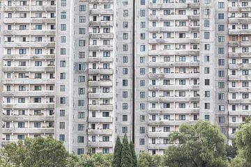 Graues Wohnhaus in der Hauptstadt von Nordkorea | Pjöngjang von Photolovers reisfotografie