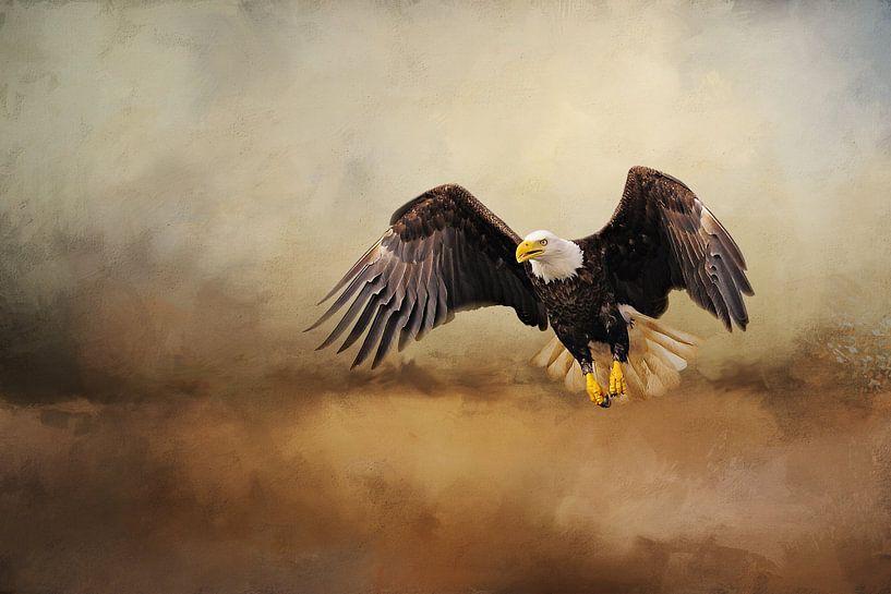 Amerikaanse Arend Vliegend In Storm van Diana van Tankeren