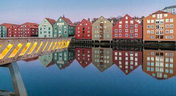 Trondheim van Rene Wolf