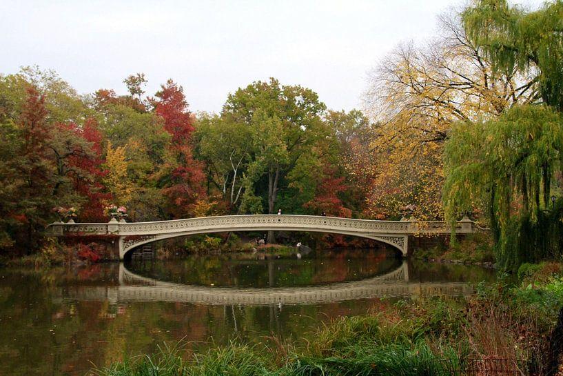 Bow bridge in New York City van Gert-Jan Siesling