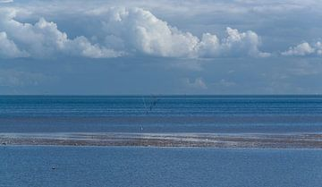 La mer des Wadden sur
