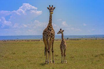 Moeder giraffe met kind van Peter Michel