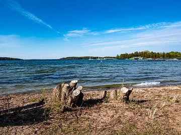 Am Ufer des Sees an der Mecklenburgische Seenplatte in Deutschland von Animaflora PicsStock