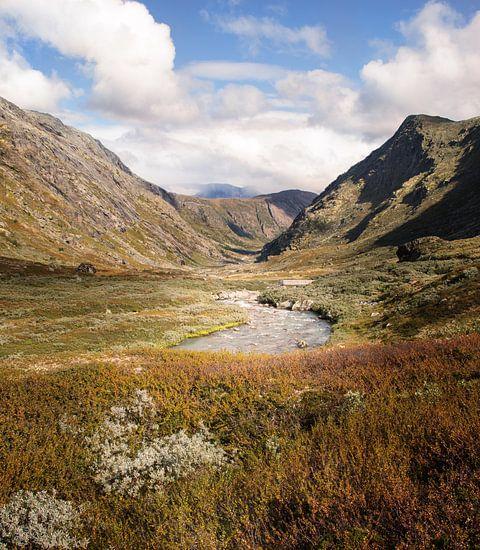 Rivier tussen twee bergen