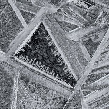 Ice Crystals van Cor Ritmeester