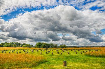 Woodhenge Engeland van Marc van Gessel