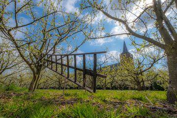 Ladder en kerk bij fruitbomen van Moetwil en van Dijk - Fotografie