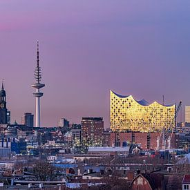 Elbphilharmonie & St. Michaelis Kirche & Fernsehturm von Joachim Fischer