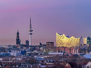 Elbphilharmonie & St. Michaelis Kirche & Fernsehturm Hamburgensie