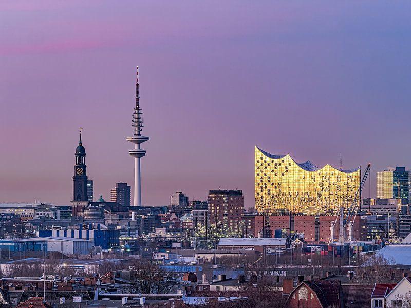 Elbphilharmonie & St. Michaelis Kirche & Fernsehturm Hamburgensie von Joachim Fischer
