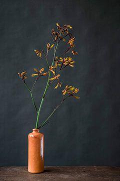 Fleur d'oranger dans un vase sur Jenneke Boeijink