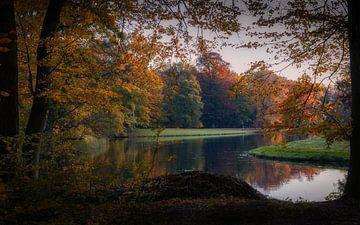 Die tolle Aussicht in einen wunderschönen herbstlichen Wald von Mart Houtman