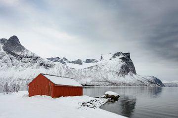 Panoramisch uitzicht op het eiland Senja in Noord-Noorwegen tijdens een koude winterdag. van Sjoerd van der Wal