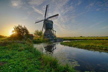 Néerlandais typique sur