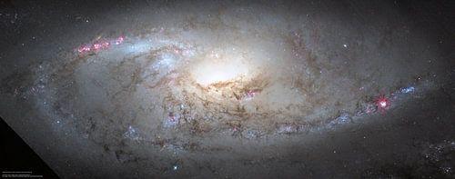M106 Het hart van een sterrenstelsel