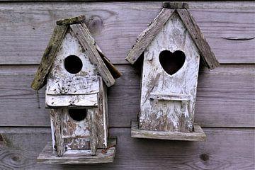 Vogelhuisjes van Beau Dorr