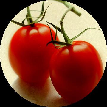 Tomaten van Roswitha Lorz