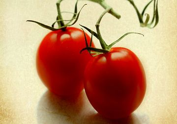 Tomaten von Rosi Lorz