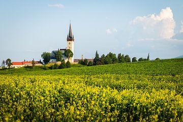 Kirche in hügeliger Landschaft der Slowakei von OCEANVOLTA