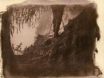 Wanderlust, wandelaar bij sprookjesachtige boomwortels in een bos von Mark van Hattem