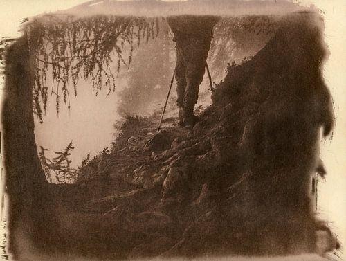 Wanderlust, wandelaar bij sprookjesachtige boomwortels in een bos van