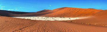 Panorama van de Deadvlei, Namibië van Rietje Bulthuis