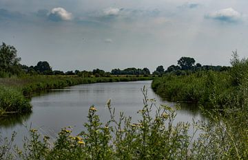 Zijtak van de Rijn, Wageningen von Cilia Brandts