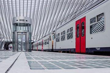 Aufzug und stehender Zug auf dem Bahnsteig von Lüttich - Guillemins. von Daan Duvillier