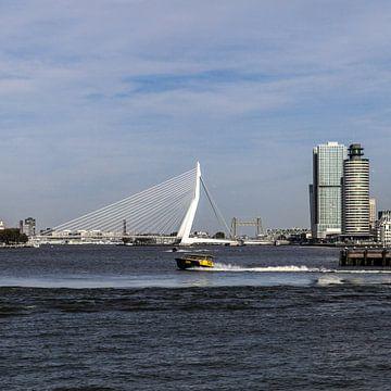 Rotterdam Erasmusbrug (vierkant) van John Ouwens