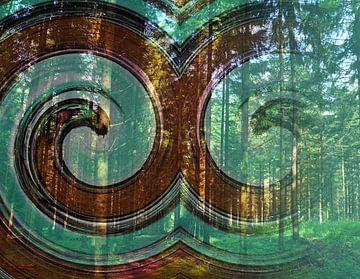 smiling forest van CreaBrig Fotografie