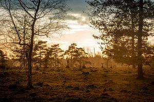 Zonsondergang in de herfst van