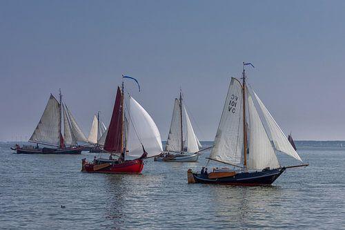 Zeilschepen op Haringvliet