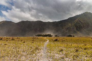 De zandvlakten van Mount Bromo van