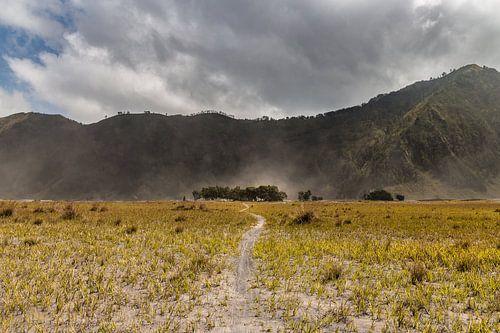 Die sandflächen des Mount Bromo von