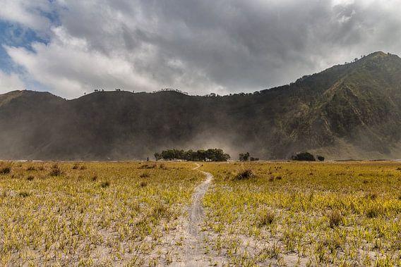 De zandvlakten van Mount Bromo